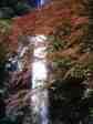 秋の箕面大滝2.jpg